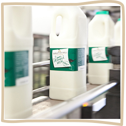 Dairy Products - Milk Supplier